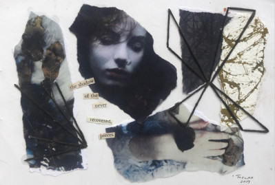 Thelma van Rensburg - The shadow of the never recovered pieces