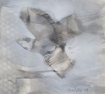 Bird in flight #2