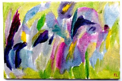 Dutch Irises for your Birthday