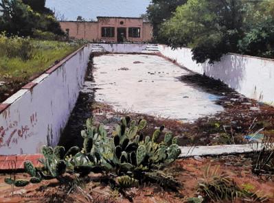 Abandoned Pool, Senekal
