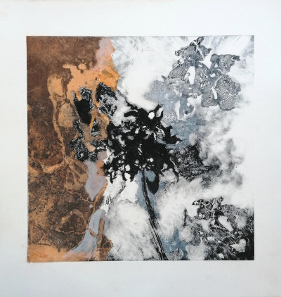 Senescent IV (framed)