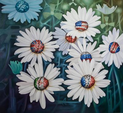 Daisies of hope